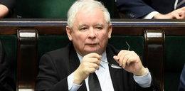 Europejski nakaz aresztowania za Tuskiem? Jest reakcja byłego premiera!