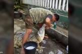 YT_kupanje_krokodila_vesti_blic_safe
