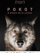 AUDIODESKRYPCJA - Pokot