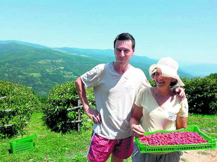 Snežana i Danko Nešković, supružnici gaje organske maline kod Bajine Bašte