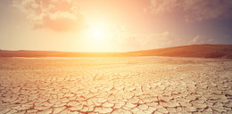 Długoterminowa prognoza. Gorące, upalne i suche lato w Polsce będzie trwało pół roku!