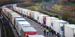 Ważna decyzja ws. ciężarówek w Dover. Skończy się koszmar kierowców?