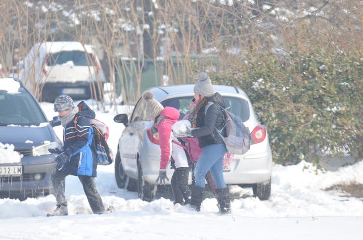 Sneg, Zima, Novi Sad, Deca, Grudvanje, Sankanje