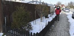 Sąsiedzki spór o kwietnik na Maślicach