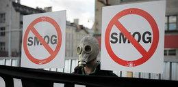 Wrocław na plakatach walczy ze smogiem