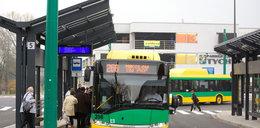 Nowe linie autobusowe w Tychach