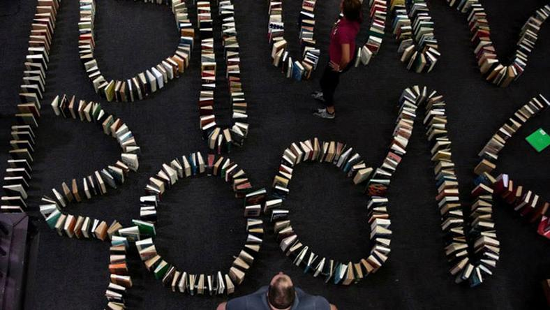 najdłuższe książkowe domino (fot. Nardus Engelbrecht)