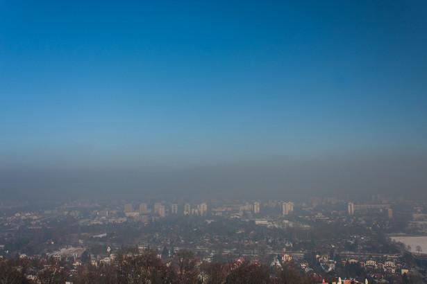 Gdyby wybory były na wiosnę, a nie na jesieni, to myślę, że smog miałby jeszcze większe znaczenie.