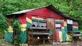 Agrowczasy na Jamajce