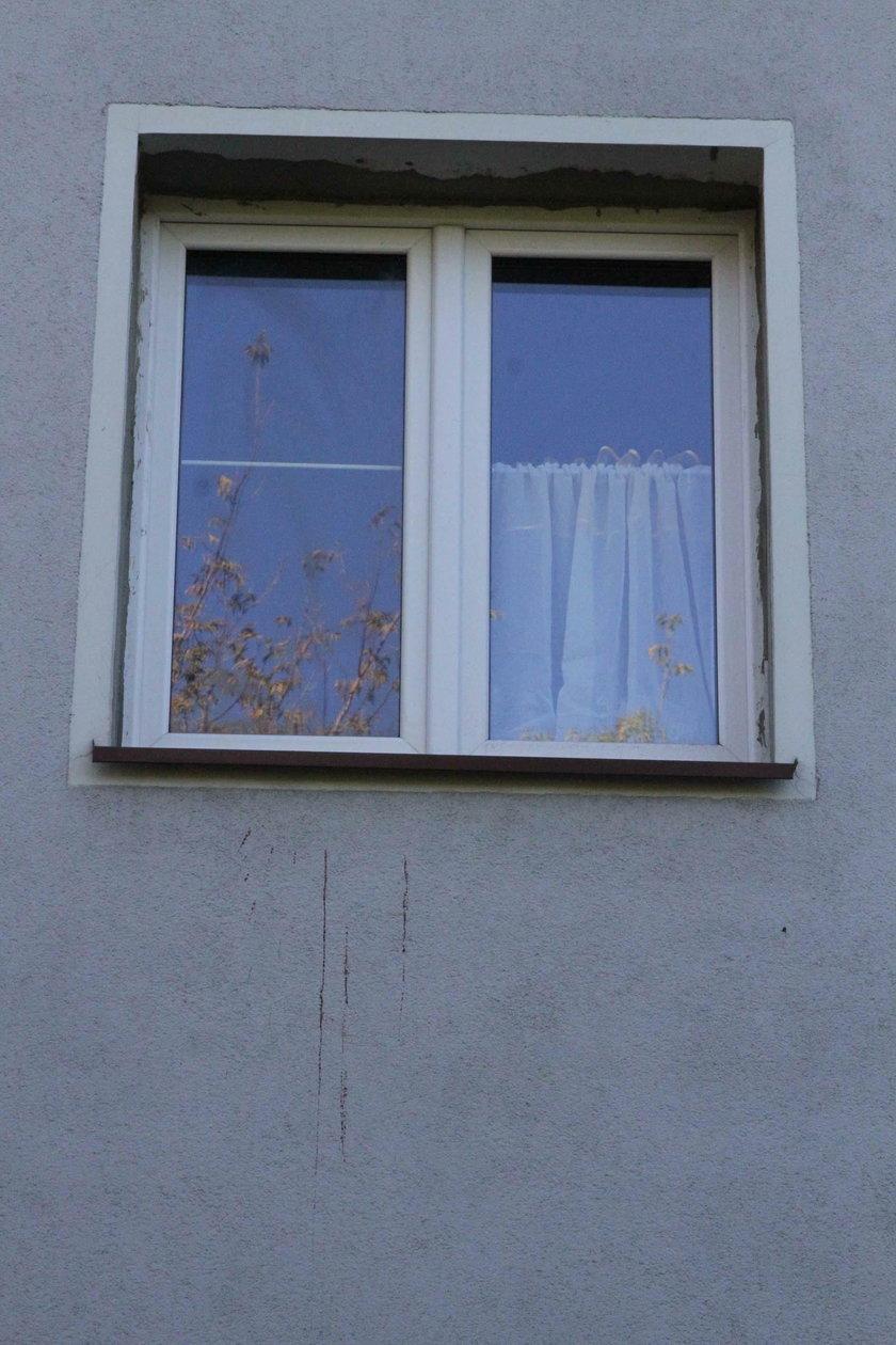 Paula S. wyrzuciło noworodka przez okno?