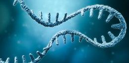 Szczepionki mRNA nie sprzyjają poronieniom!