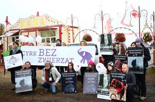 """Akcja protestacyjna 'Nie chodźcie do cyrków ze zwierzętami"""""""