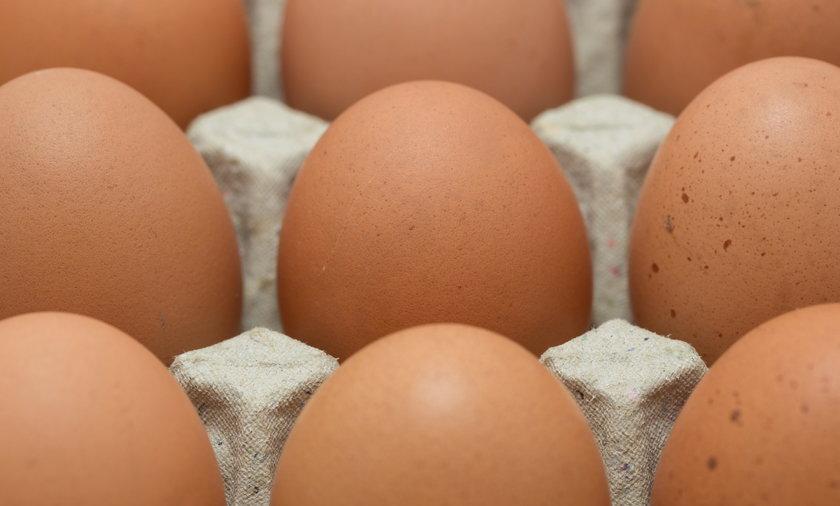 Bakterie salmonella enteritidis wykryto w jajkach o kodzie 3PL26111314