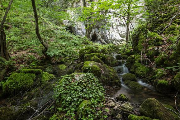 Odbornici u Gornjem Milanovcu traže da se promeni ime reke Smrduše