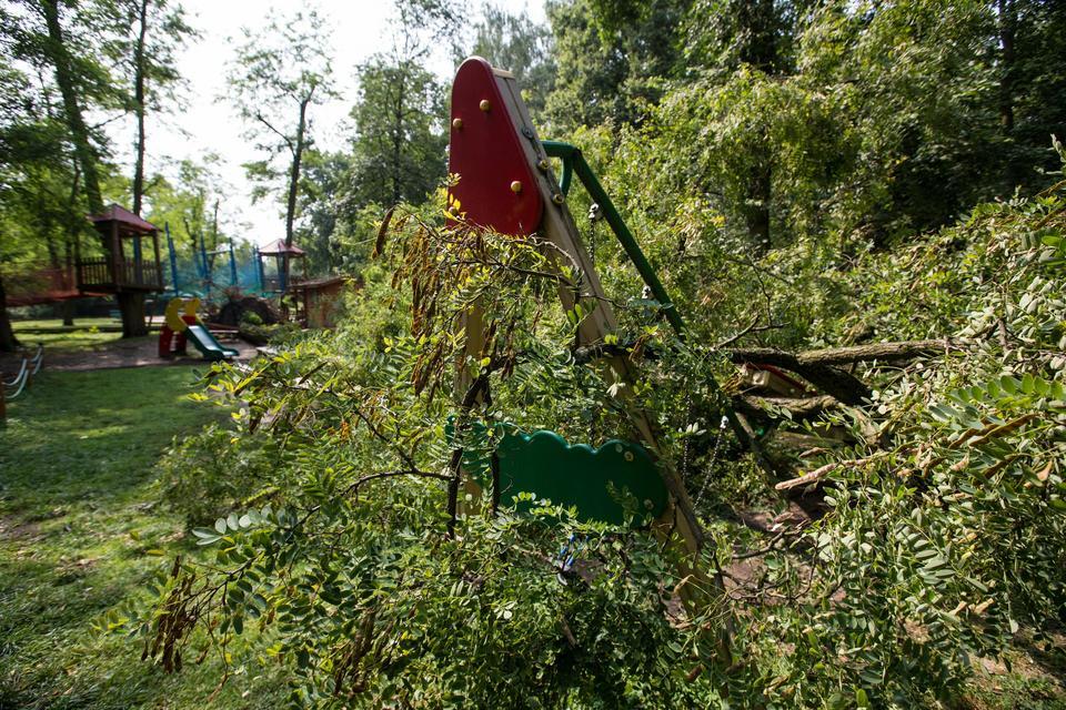 Zniszczone zoo w Poznaniu