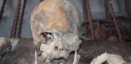 Szkielet człowieka znaleziony w Bytomiu, to ofiara epidemii cholery?