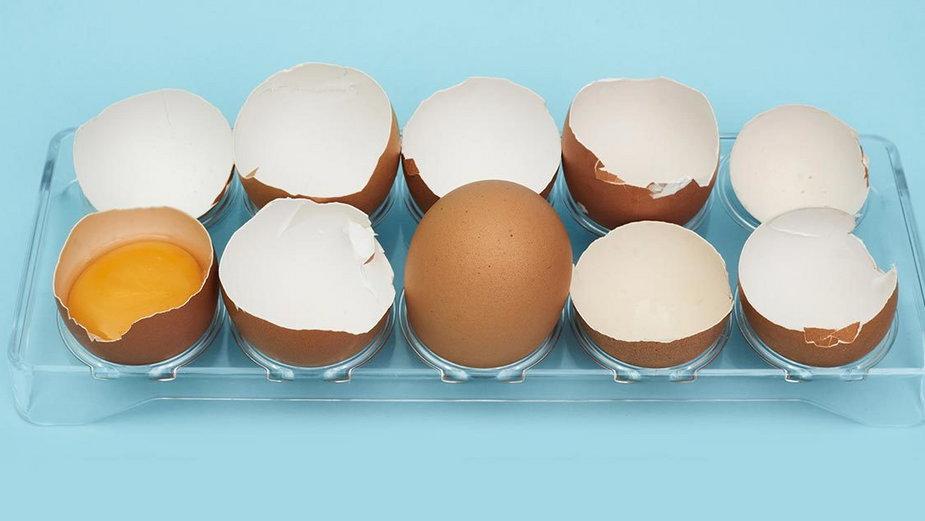 Zastosowania skorupek od jaj