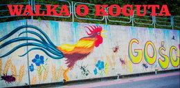 Kogut na muralu oburzył księdza z Pcimia. Widzi w nim symbol LGBT