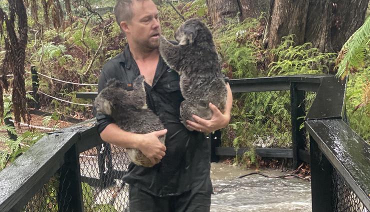 australija poplave foto epa australian reptile park