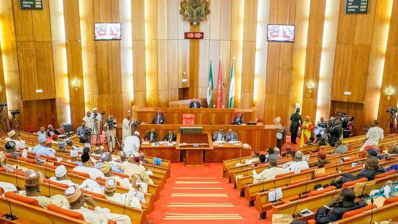 Nigerian Senate in a session (Premiumtimes)