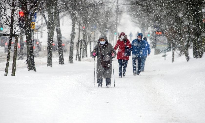 Jaka zima w tym roku? Akacja przepowiada zimę