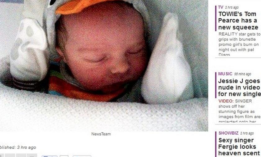 Terrier miniaturka zagryzł 8-dniowego niemowlaka