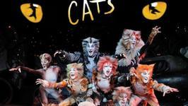 """""""Taniec z gwiazdami"""": artyści musicalu """"Cats"""" wystąpią w finale"""