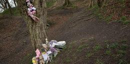 Poranione zwłoki noworodka w lesie. Matka została zgwałcona?