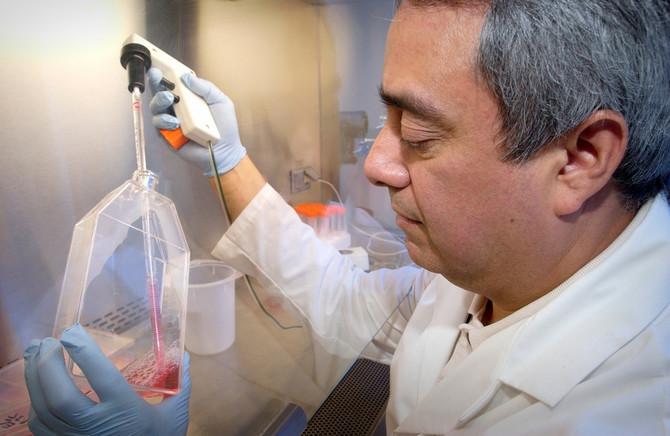 Znanje o ranijim pandemija može da dovede do rešenja na KOVID- 19