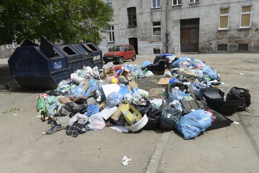 Podwórko między Myśliwską, Trzebnicką a Jagiellończyka we Wrocławiu tonie w śmieciach
