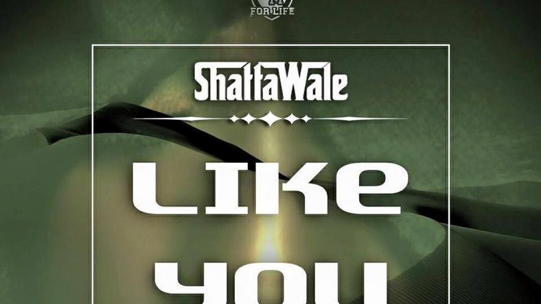Shatta Wale - Like You (Prod. by Shatta Wale)