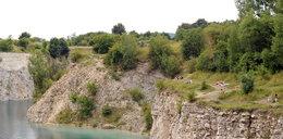 Radni chcą budowy parku na Zakrzówku