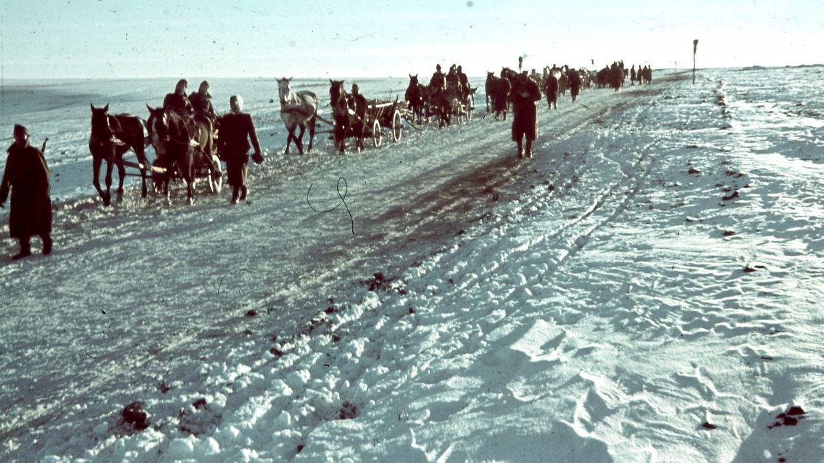 Hegyekben álltak az orosz holttestek a magyar állások előtt – Leitatott katonákkal tört át a Vörös Hadsereg a…