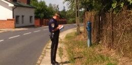 Strażnicy odnaleźli... hydrant