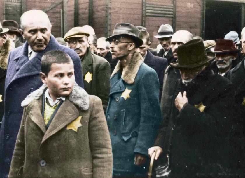 Auschwitz. Opublikowano zdjęcia w kolorze z obozu koncentracyjnego Auschwitz