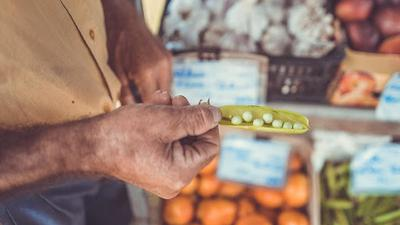Farmers Markets increase access to fresh, nutritious food for the rich and poor