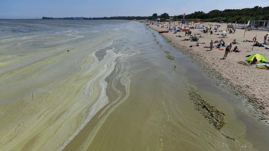 Sinice w Bałtyku i nie tylko. Które kąpieliska są zamknięte? [AKTUALNA LISTA]