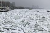 Ledeno doba na Dunavu
