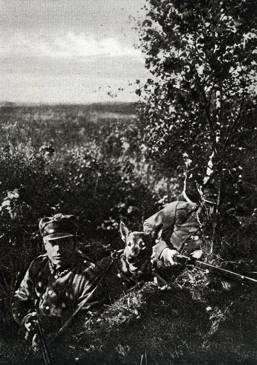 Oni jako ostatni bronili Polski