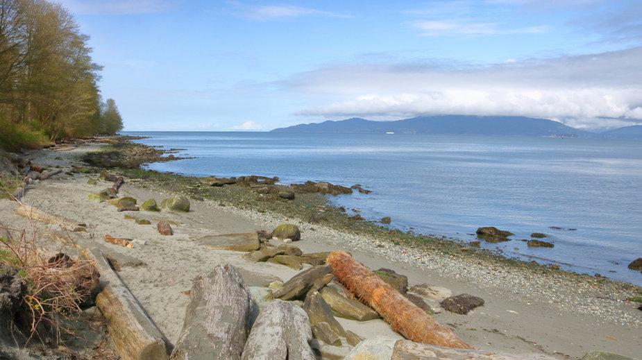 Plaża, Salish Sea