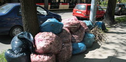 Posprzątajcie worki ze śmieciami z ulic!