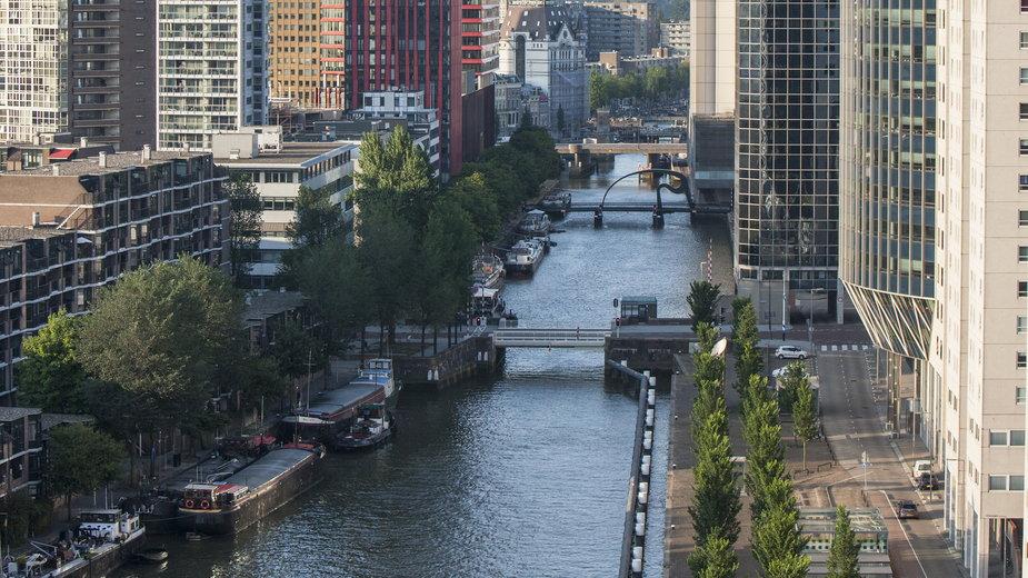 Kanał w Rotterdamie