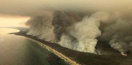 To naprawdę wygląda dramatycznie. Pożary w Australii mogą dać się we znaki wszystkim