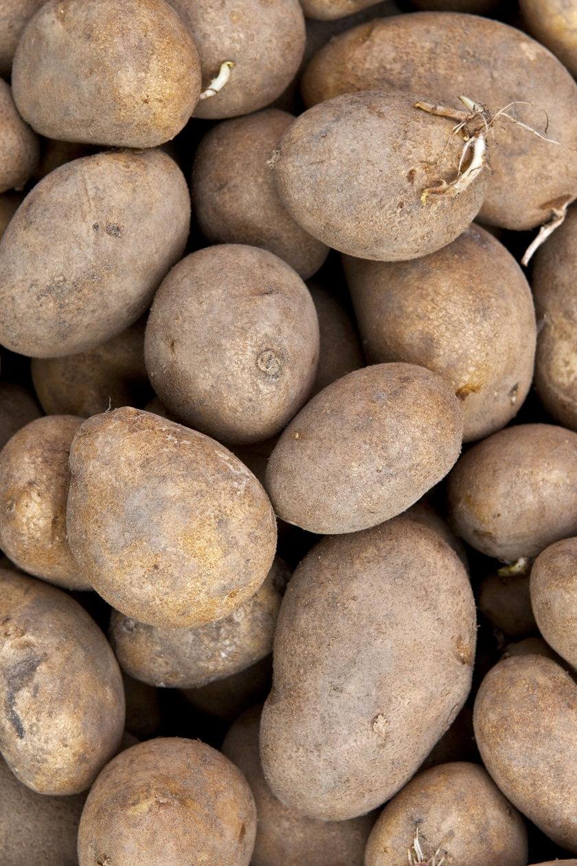 Ziemniaki będą droższe?