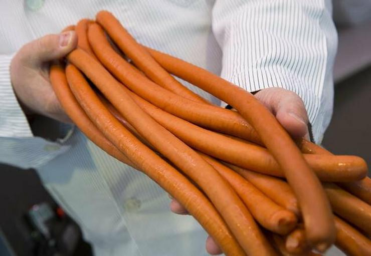 316004_konjsko-meso-kobasice-nemacka-ap