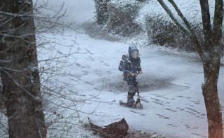 Szef RCB: Po opadach śniegu 292 tys. odbiorców bez prądu