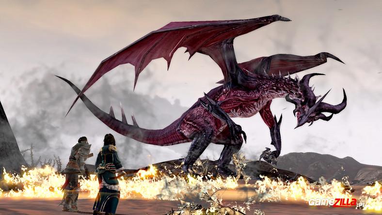 Ponad Tuzin Zrzutów Z Dragon Age 2 Na Które Z Pewnością