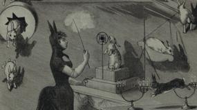 """KSIĘŻYC – """"Rabbit Eclipse"""""""