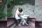 NEĆU KUĆI! Ovaj preslatki pas odbija da prekine igru i vrati se u svoj dom