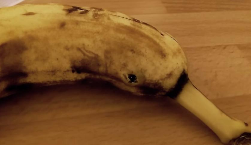 Pająk Wychodzi Z Banana Pająki W Bananach